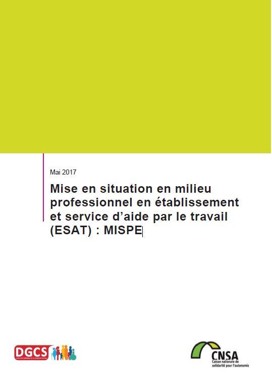 Mémo n° 12 - L'implication de la CNSA dans le plan Maladies neurodégénératives 2014-2019 - mai 2017 (PDF, 378.73 Ko)