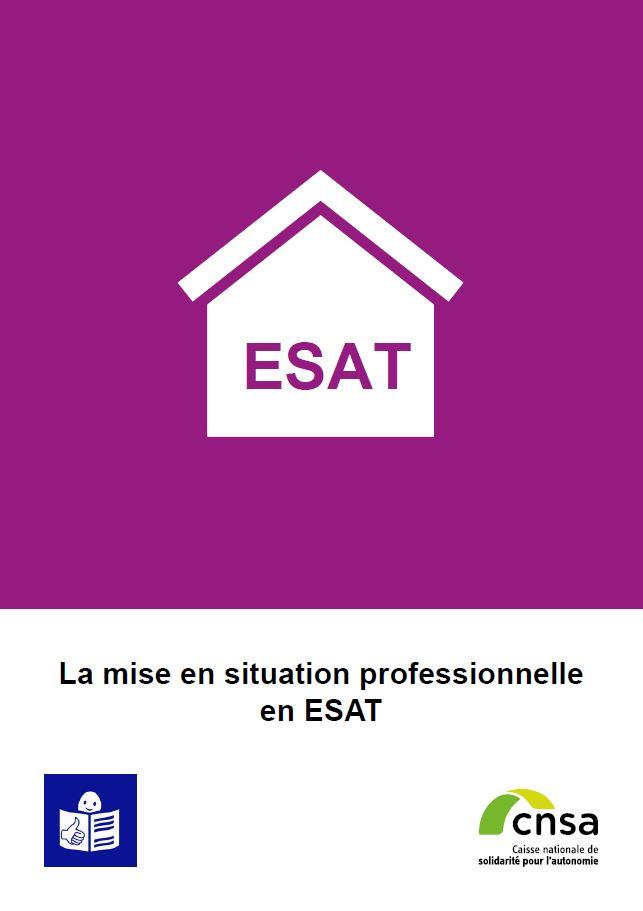 La mise en situation professionnelle en ESAT (PDF, 940.83 Ko)